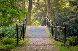 Green park in the morning. Bridge in a beautiful castle park in Pszczyna, Poland.