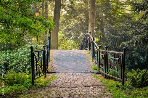 Green park in the morning. Bridge in a beautiful castle park in Pszczyna, Poland. - 172194265
