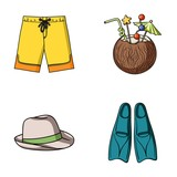 Swimming trunks, cocktail with coconut, panama and flippers. Surfing set collection icons in cartoon style vector symbol stock illustration web. - 172243206