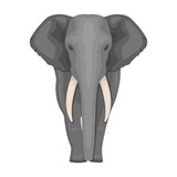 The elephant, the biggest wild animal. African elephant with tusks single icon in cartoon style vector symbol stock illustration web.