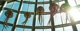 Jellyfish of Valencia
