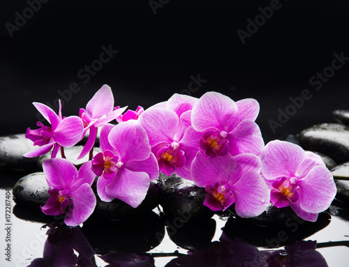 Keuken foto achterwand Spa pink branch orchid on black stones reflection