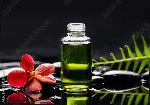 Poster Spa Single red orchid with fern and stones ,oil in glass on wet background