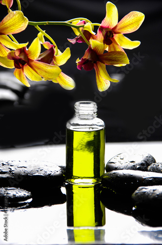 Poster Spa Yellow branch orchid with black stones with bottle of oil on wet pebbles