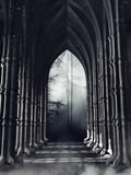 Ciemny korytarz z kolumnami wychodzący do lasu nocą - 172323080