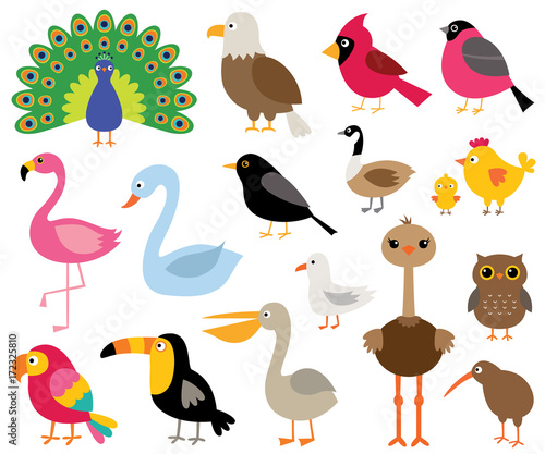 Fridge magnet Cartoon birds, isolated illustrations set