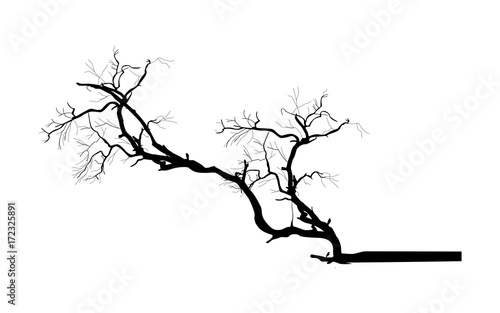 Tree Branch Vector Silhouette - clip-art cartoon vector - 172325891