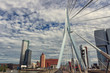 Rotterdam. The urban landscape of a modern European city.