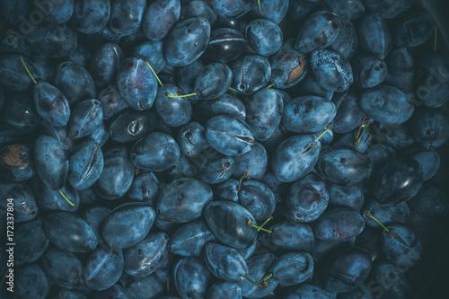 A lot of blue sweet plum - 172337804