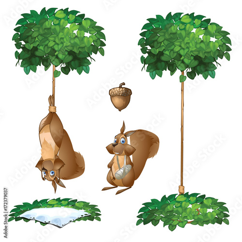 Fotobehang Zoo Trap for squirrel - one animal hanging on rope from tree and another one with broken paw. Vector scenic image in cartoon style. Illustration isolated on white background