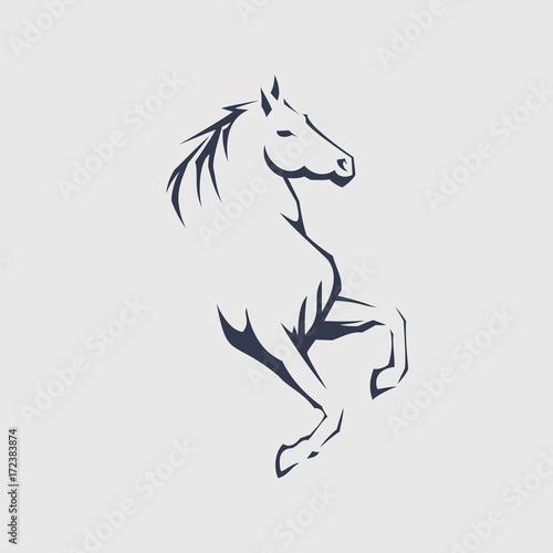 Fototapeta Horse vector illustration