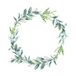 Watercolor Christmas floral wreath.  Botanical frame with traditional plants decor: mistletoe, eucalyptus leaves and white berries. Holiday illustration isolated on white background