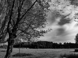 Landscape in Belgium