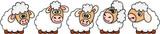 Set of five cute sheep  - 172407208
