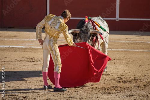 TORO Y TORERO MIRANDOSE LAS CARAS