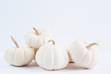 simple white pumpkins for fall home decor - 172437033