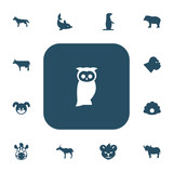 Set Of 13 Editable Animal Icons. Includes Symbols Such As Horse, Gazelle, Tiger And More. Can Be Used For Web, Mobile, UI And Infographic Design.