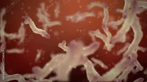 3d rendered video with bacteria.