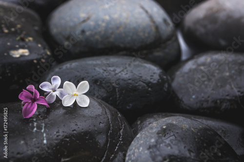 Black stones with a flower 4