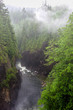 River at the Bottom of a Deep Canyon on a Rainy and Foggy Day. North Vancouver, BC, Canada.