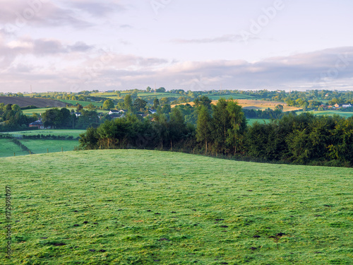 Fotobehang Olijf Early Autumn countryside morning,Northern Ireland