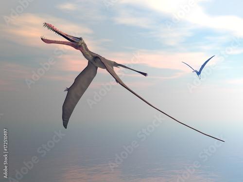Sticker Anhanguera prehistoric birds - 3D render