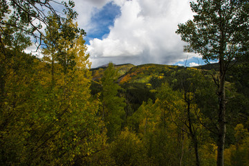 Colorado Mountains in the fall with trees changing color © ruraldesigns