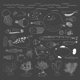 Vector of underwater creatures - 172539490