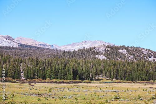 Spoed canvasdoek 2cm dik Pool Yosemite Valley