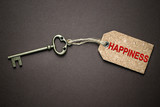 Key to happiness - 172551405