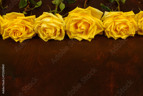 Beautiful yellow roses on a dark wooden background. Poster