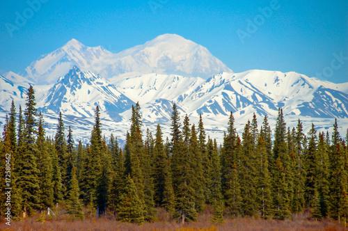 Deurstickers Blauw mountains landscape