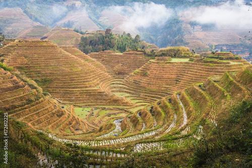 Fotobehang Guilin chinese rice terraces longji