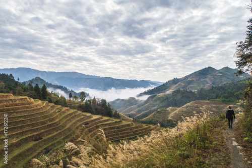 Staande foto Guilin chinese rice terraces longji