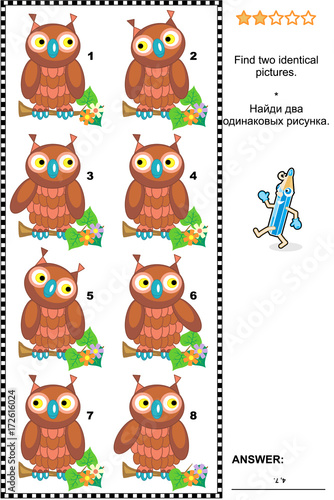 Foto op Plexiglas Uilen cartoon Visual puzzle: Find two identical pictures of cute wise owls. Answer included.