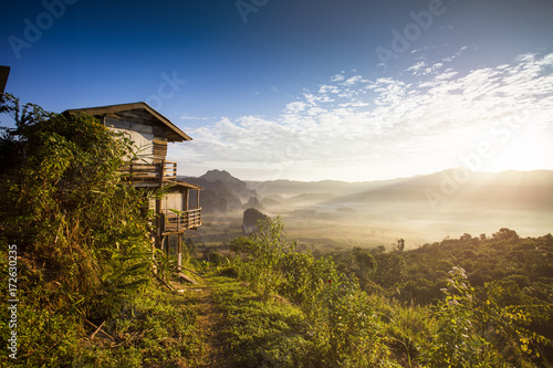 Wall mural Wooden home among beautiful natural scenery in the forest
