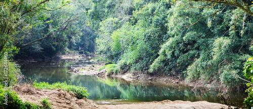 Foto op Aluminium Rio de Janeiro Rio e floresta.