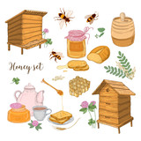 Honey production, beekeeping or apiculture set - honeycomb, man-made beehives, wooden dipper, bees, teapot hand drawn in retro style on white background. Colored vector illustration. - 172660692