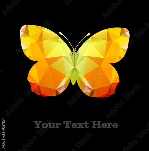 Foto op Plexiglas Vlinders in Grunge Butterfly polygonal Vector Shape