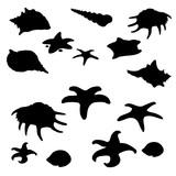 Black shape of molluscs, shells and starfish. Marine underwater inhabitants. Big vector set on white background. Illustration isolated