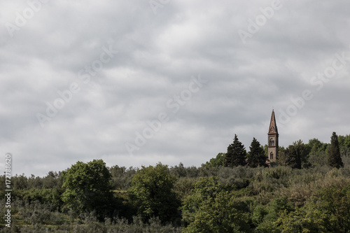 Foto op Canvas Wit A small church bell tower emerging from a green forest, beneath an overcast sky