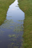 Full small ditch. - 172792058