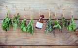 Various herbs hanging on shabby wooden background.  Parsley ,oregano, mint, sage, rosemary, sweet basil ,holy basil and thyme for seasoning concept. - 172794094