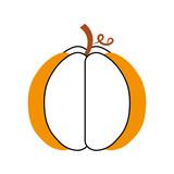 autumn seasonal pupmkin harvest nature vector illustration - 172821832