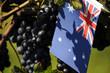 Australian wine Viticoltura in Australia Viticulture en Australie  オーストラリアワイン Виноделие в Австралии Weinbau in Australien Vino  澳大利亞葡萄酒 Wina australijskie Wijnbouw in Australië Australiska viner