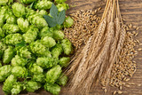 Hop Cones with Barley on the Woden Desk - 172834066