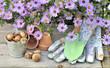 fleurs d'aster au dessus d'accessoires de jardinage   - 172852499