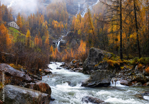 yellow larch and waterfalls in the autumnal Alps Poster