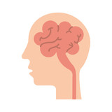 human head and brain icon mind concept vector illustration - 172876007