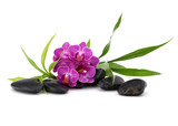 Zen pebbles and orchid flower. Stone spa and healthcare concept. - 172886664